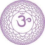 O sétimo chakra: Sahasrara